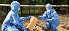 DNA Crime Scenes